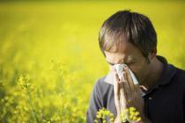 Αλλεργική ρινίτιδα: μειώνοντας τη συχνότητα εμφάνισης και τη βαρύτητα